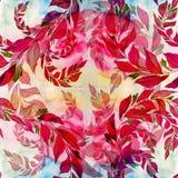 Les feuilles et les branches sont des usines d'une composition décorative, de parfumerie et de cosmétique Configuration sans join Image libre de droits