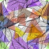 Les feuilles noircissent des découpes, fond à la mode moderne pourpre lilas bleu orange rose magenta lumineux d'arc-en-ciel modèl Image stock
