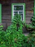 Les feuilles ont élevé la maison d'I Images stock