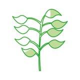 Les feuilles plantent l'icône d'isolement illustration de vecteur
