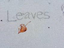 Les feuilles sèches et le ` manuscrit de feuilles de ` sur le sable échouent Photos stock