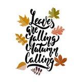Les feuilles sont appeler en baisse d'automne - des automnes confortables tirés par la main marquant avec des lettres l'expressio illustration de vecteur