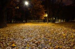 Les feuilles tombées par automne se trouvent sur le chemin en parc de ville images libres de droits