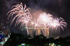 Les feux d'artifice affichent pendant le NDP 2010 Images stock