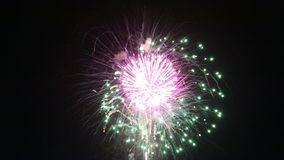 Les feux d'artifice de festival ont illuminé le ciel nocturne banque de vidéos