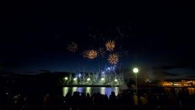 Les feux d'artifice de pivoine et de comète éclatent dans le ciel nocturne 4K banque de vidéos