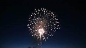 Les feux d'artifice merveilleux ont illuminé le ciel nocturne banque de vidéos