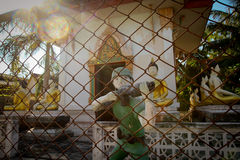 Les figures des soldats s'approchent d'un monastère bouddhiste Image stock
