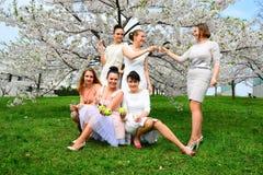 Les filles avec le champagne célébrant dans le ` s de Sakura font du jardinage Photo libre de droits