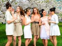 Les filles avec le champagne célébrant dans le ` s de Sakura font du jardinage Images libres de droits