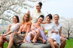 Les filles avec le champagne célébrant dans le ` s de Sakura font du jardinage Photos libres de droits