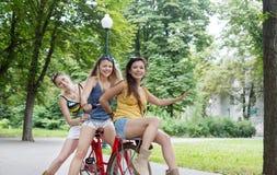Les filles chics de boho heureux montent ensemble sur des bicyclettes en parc Photographie stock