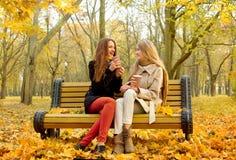 Les filles communiquent sur un banc en parc d'automne Image stock