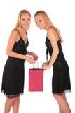 Les filles jumelles regarde dedans pour mettre en sac 2 Photographie stock