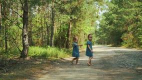 Les filles marchent sur un chemin forestier banque de vidéos