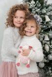 Les filles mignonnes d'enfant avec le jouet de moutons tiennent l'arbre de Noël proche Images libres de droits