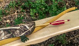 Les flèches en bois d'arc sont dans la forêt images libres de droits
