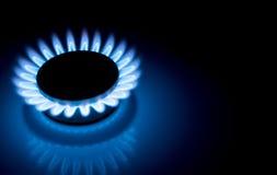 Les flammes bleues de fraise-mère brûlante de cuisinière à gaz se ferment dans l'obscurité sur un fond foncé Photographie stock libre de droits