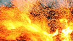Les flammes du feu image libre de droits