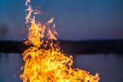 Les flammes du feu brûlant l'herbe photo stock