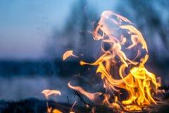 Les flammes du feu brûlant l'herbe photographie stock