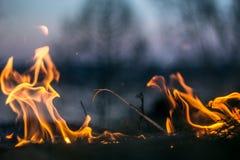 Les flammes du feu brûlant l'herbe photos libres de droits