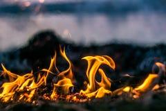 Les flammes du feu brûlant l'herbe image libre de droits