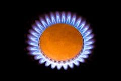 Les flammes du gaz aiment une fleur images libres de droits