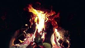 les flammes du vrai feu brûlent le mouvement avec des branches du bois, cheminée dans le mouvement lent clips vidéos