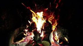 Les flammes du vrai feu brûlent le mouvement avec des branches du bois, cheminée dans le mouvement lent, dessus clips vidéos