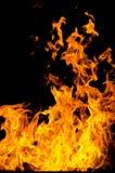 Les flammes ont allumé le feu, chauffant sa chaleur en temps froid Règles de l'élevage sûr du feu Image stock