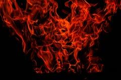 les flammes ont isolé Photo libre de droits