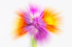 Les fleurs abstraites ont brouillé le fond Images stock
