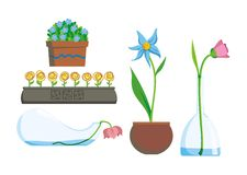 les fleurs autoguident Image stock