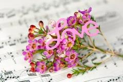 Les fleurs avec amour se connectent la musique Images stock