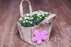 Les fleurs blanches artificielles avec la carte cadeaux rose ont emballé dans le sac de toile Images libres de droits