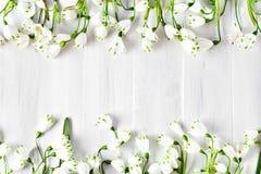Les fleurs blanches du lis de Loddon se trouvent sur les conseils en bois blancs Photo stock