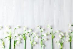 Les fleurs blanches du lis de Loddon se trouvent sur les conseils en bois blancs Photographie stock libre de droits