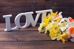 Les fleurs colorées de jonquilles et le mot en bois aiment sur la peinture brune Photographie stock libre de droits