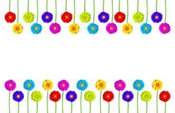 les fleurs colorées encadrent le gerber Image stock