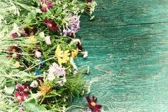 Les fleurs d'été raillent  Photos libres de droits