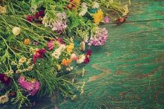 Les fleurs d'été raillent  Photographie stock libre de droits