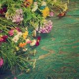 Les fleurs d'été raillent  Images libres de droits