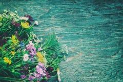 Les fleurs d'été raillent  Photo stock