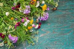 Les fleurs d'été raillent  Photo libre de droits