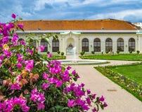 Les fleurs d'un arbuste de glabra de bouganvillée et le bâtiment d'Orangerie au complexe de palais de belvédère à Vienne, Autrich photographie stock libre de droits