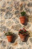 Les fleurs dans des pots d'argile ont accroché sur le mur en pierre Photographie stock libre de droits