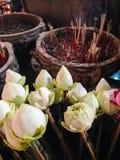 Les fleurs de Lotus croient Images libres de droits