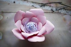 Les fleurs de papier sont parfaites pour apporter le ressort à l'intérieur n'importe quand de l'année Photos libres de droits