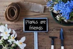 Les fleurs de ressort, signe, usines des textes sont des amis Photographie stock